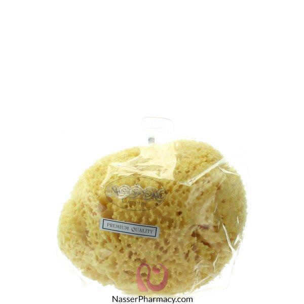 هايدريا لندن اسفنجة استحمام  Honeycomb