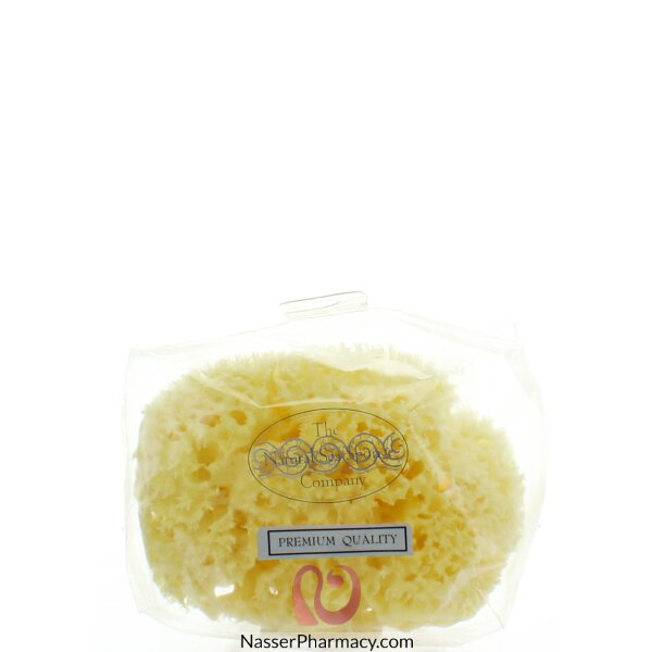 Hydrea London Honeycomb Sea Sponge For Bath 5 To 5.5