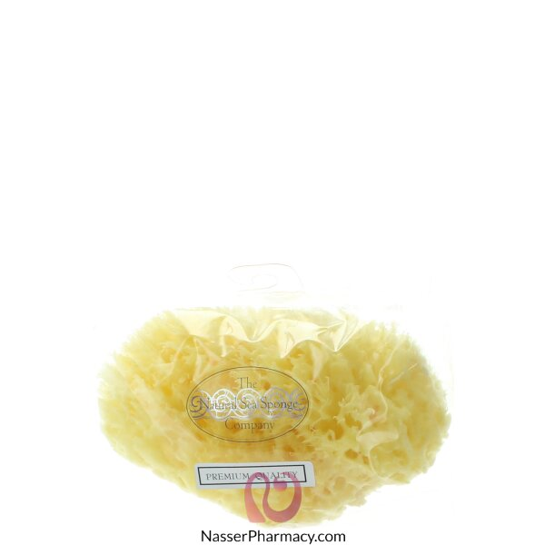Hydrea London Honeycomb Sea Sponge For Bath
